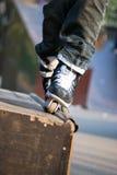 Gealigneerde schaatser Royalty-vrije Stock Foto