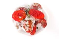 Gealterte Erdbeere - Archivbild Lizenzfreie Stockbilder