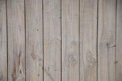 Gealterte gemalte vertikale Linien des grauen hölzernen Hintergrundes lizenzfreie stockfotografie