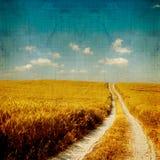 Gealterte Landschaft Lizenzfreies Stockfoto