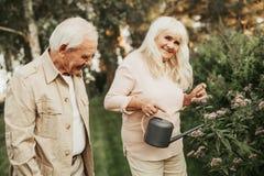 Gealterte Paare von den Gärtnern, die im garth stehen lizenzfreie stockfotografie