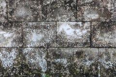 Gealterter alter roter weißer konkreter horizontaler Hintergrund Gray Brick Wall Texture Destroyeds Schäbige städtische unordentl Stockbilder