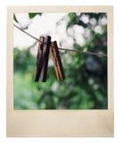 Gealterter Retro- Fotorahmen lizenzfreies stockfoto