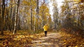 Gealterter sportlicher Frauenstoß im Herbstwald stock video