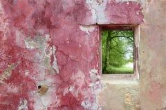 Gealterter verwitterter rosafarbener Wandfenster-Buchewald Lizenzfreies Stockfoto