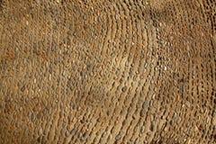 Gealtertes altes Weinleserollen entsteint Fußboden Stockfotografie