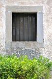 Gealtertes Architekturfenster und grüner Busch Stockbild
