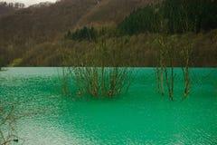 , Geamana, Romênia, lago mountain Imagens de Stock