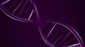 Geanimeerde DNA-ketting Violette DNA-Bundel langzame motie - 3D Animatie stock illustratie