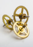 Gear of the clock. On a white background Stock Image