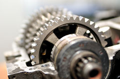 Gear. Stock Images