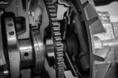 The gear of a motor in machine.  Stock Image