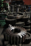 Gear wheel. Used to transmit motion or change, a machine element threaded on the various profiles Royalty Free Stock Photography