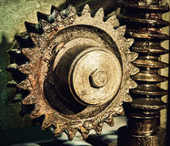 Gear wheel, cogs and screw of machine taken close up. Royalty Free Stock Images
