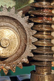 Gear wheel, cogs and screw of old machine. Royalty Free Stock Photography