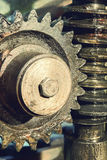 Gear wheel, cogs and screw of old machine taken close up. Stock Photography