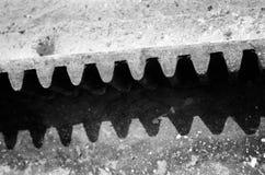 Gear wheel detail Stock Image