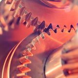 Gear wheels close-up Stock Images