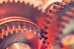 Gear wheels close-up Stock Photography