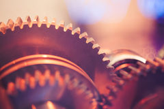 Gear wheels close-up Stock Photo