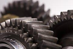 Gear wheels closeup Stock Image