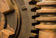 Gear Worm Drive Royalty Free Stock Images