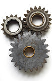 Gears. Collection of gears on white Royalty Free Stock Images