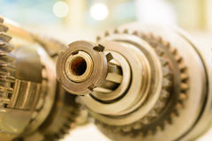 Gears, impaled on the shaft spline. Stock Photo
