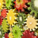 Gears made with fruit slices Royalty Free Stock Images