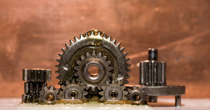 Gears in oil Royalty Free Stock Photo