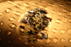 Gears In Sand Royalty Free Stock Photography