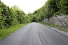 Geasfalteerde weg aan het hout Royalty-vrije Stock Foto