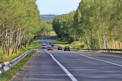 Geasphaltierte Straße auf einer Steigung zwischen Birkenplantagen wird mit einem Strom von Autos geladen Lizenzfreie Stockbilder