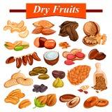Geassorteerd droog fruit vastgesteld met inbegrip van cachounoot, amandel, rozijn, fig. en noten stock illustratie
