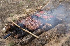 Geassorteerd heerlijk geroosterd vlees met groente over de steenkolen op een barbecue Stock Fotografie