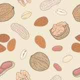 Geassorteerd noten naadloos patroon Stock Foto