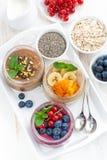 Geassorteerd ontbijt van chiazaden en vruchten in kruiken Royalty-vrije Stock Foto's
