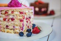 Geassorteerde brokken verschillende cakes: drie chocolade, wortel, aardbei, chocolade Stock Fotografie
