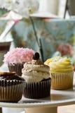 Geassorteerde cupcakes Stock Fotografie