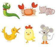 Geassorteerde dieren Royalty-vrije Stock Afbeelding