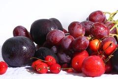 Geassorteerde exotische vruchten op wit stock fotografie