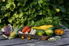 Geassorteerde groenten Royalty-vrije Stock Foto