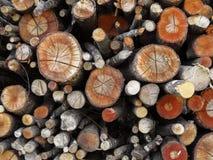 Geassorteerde logboekenachtergrond Royalty-vrije Stock Afbeeldingen