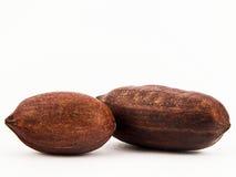 Geassorteerde noten Royalty-vrije Stock Afbeelding