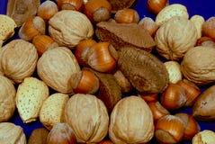 Geassorteerde noten op blauw stock foto's