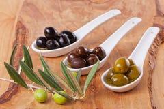 Geassorteerde olijven Stock Afbeelding