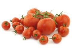 Geassorteerde tomaten op de wijnstok en kersentomaten Royalty-vrije Stock Afbeelding