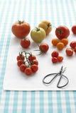 Geassorteerde tomaten op lijst Stock Foto
