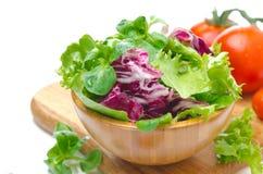 Geassorteerde verse geïsoleerde salades en tomaten Royalty-vrije Stock Foto