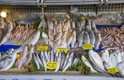 Geassorteerde verse zeevissen op markt of bazaarteller Veelvoudige vissen op de tribune van de vissenmarkt stock afbeelding